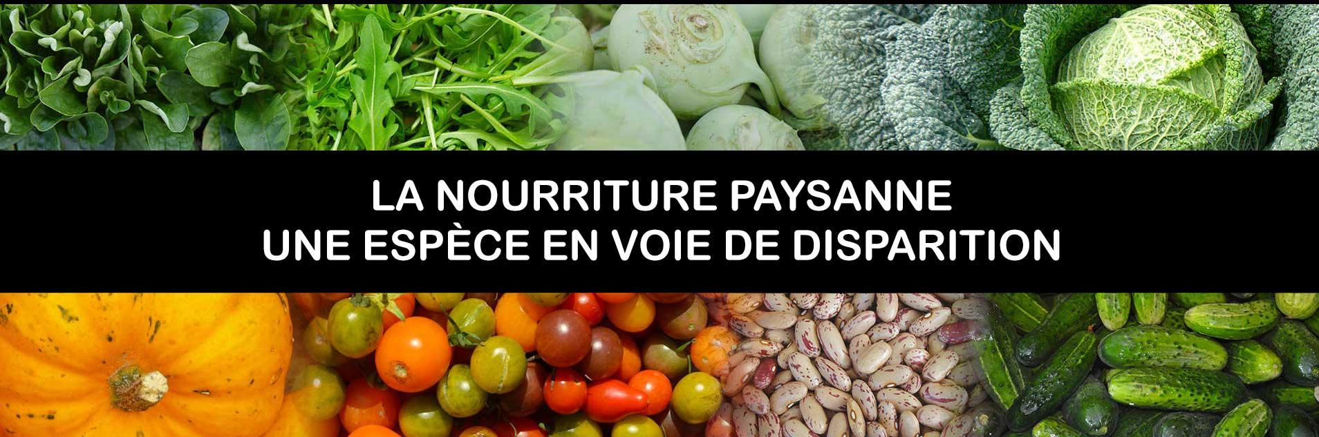 NOURRITURE PAYSANNE, ESPÈCE EN VOIE DE DISPARITION https://kokopelli-semences.fr/