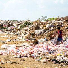 Comment nos déchets et les eaux usées se retrouvent dans notre assiette 4